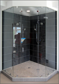Neo-Angle Shower Door #41